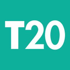 Genuine Arrow fastener T20 staples
