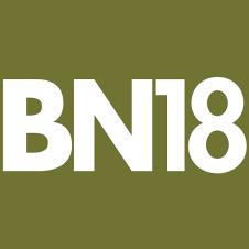 Genuine Arrow fastener BN18 brad nails