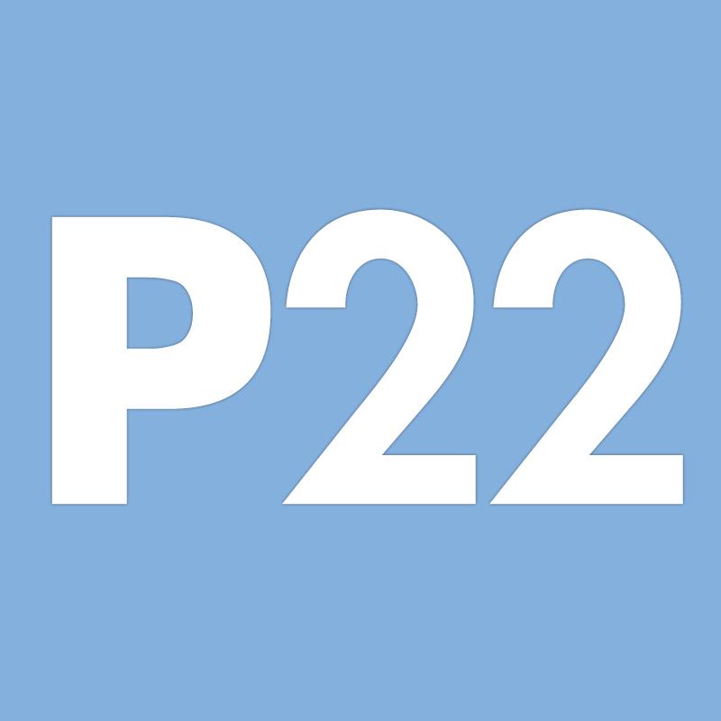 Genuine Arrow fastener P22 staples