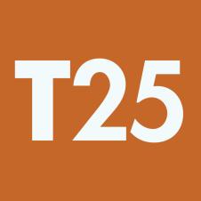 Genuine Arrow fastener T25 staples