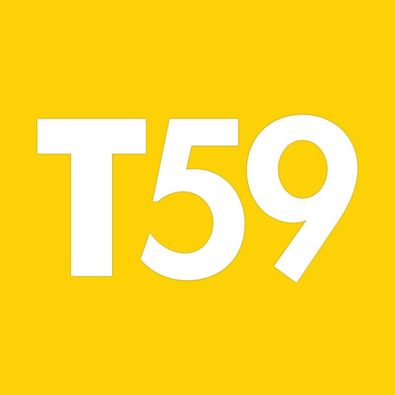 Genuine Arrow fastener T59 staples